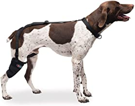 Caldera Pet Therapy Wrap - Tarsal & Stifle