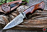 Custom Handmade Hunting Knife Bowie Knife Damascus Steel Survival Knife EDC 10'' Overall Walnut Wood...