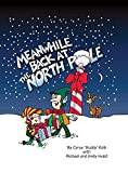Meanwhile Back At The North Pole