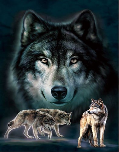 3D Home Wall Art Decor Lenticular Pictures, Wolves Collection Holographic Flipping Images, 12x16 inches Animal Poster Painting, Without Frame, Wolves in Dark