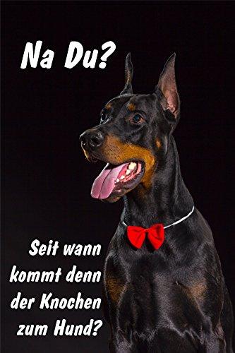 Melis Folienwerkstatt Schild Warnschild Achtung Dobermann – Seit wann kommt denn der Knochen zum Hund – Hund Hundeschild 30x20cm Hartschaum Aluverbund -S25Q