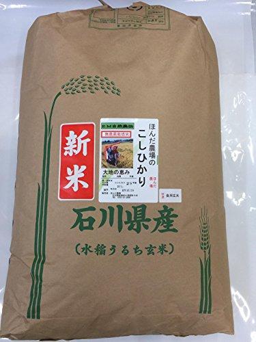食用玄米 令和二年産 新米 石川県産 無農薬 こしひかり EM自然農法 大地の恵 玄米 送料込み (30kg)