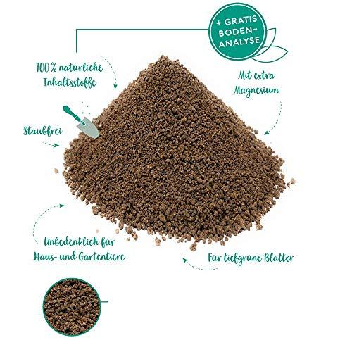 Jasker's Dünger für Nadelbäume, Koniferen und Tannen ⎜ mit Magnesium für frischgrüne Spitzen (Koniferendünger, 1.5 Kg)