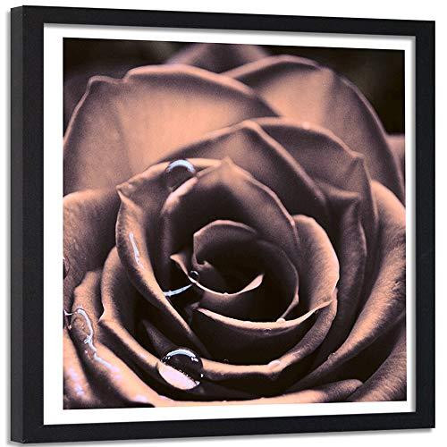 Feeby Impression encadrée Noir Abstrait Image Déco Rose Gouttes d'eau Nature Rose 50x50 cm