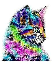 Colorful Cat 5D Diamond Painting DIY Paint By Diamond Kit Craft Home Wall Decor 30 x 30 cm