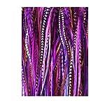 Extensiones de pelo para mujer de SEXY SPARKLES, con 5 plumas de 15,2 - 27,9 cm. Extensiones de plumas y 2microcuentas de silicona