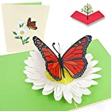 PopLife - Tarjeta emergente de mariposa de monarca naranja – Aniversario 3D, tarjeta de agradecimiento, día de San Valentín, feliz cumpleaños – pliega para enviar por correo – para mamá, hija, esposa