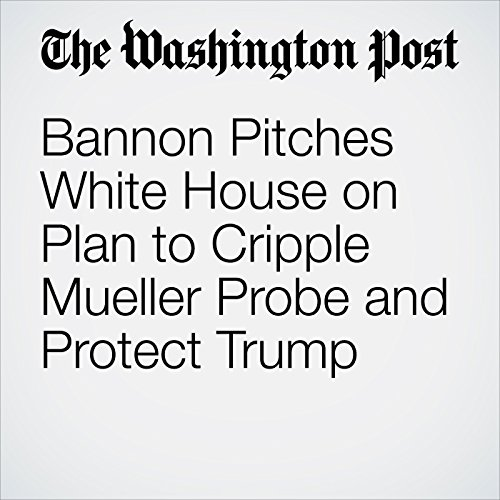 Bannon Pitches White House on Plan to Cripple Mueller Probe and Protect Trump audiobook cover art
