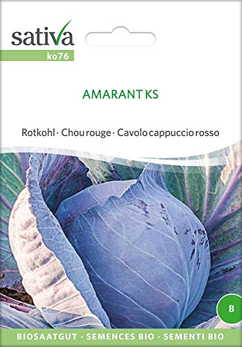 Sativa Rheinau ko76 Rotkohl Amarant Ks (Bio-Rotkohlsamen)