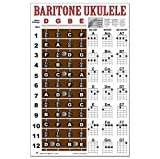 Baritone Ukulele Fretboard Notes & Easy Beginner Chord Chart Instructional Poster for Bari Uke by A New Song Music 11'x17'