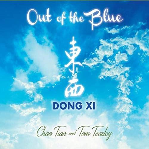 Dong XI, Tom Teasley & Chao Tian