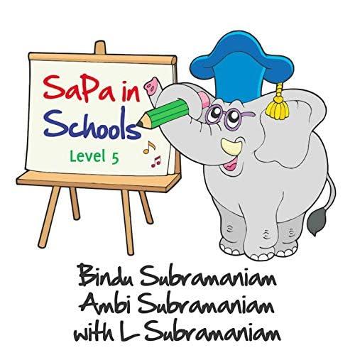 SaPa in Schools