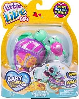 little live pets turtle jules