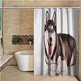 "Alaskan Malamute Womens Shower Curtain Funny Adorable Siberian Dog Blue Eyes Furry Domestic Canine Image for Kids Bathroom Guest Bathroom 63""x72"",Brown Cream White"