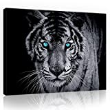 FORWALL Bilder Canvas Tiger O1 (100cm. x 75cm.)