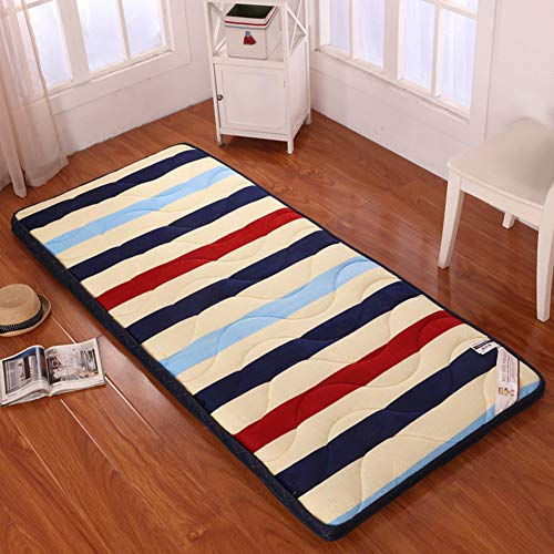 JINDSMART Traditional Japanese Tatami Mat,Sleeping Tatami Floor Mat, Futon Furniture for Sleep & Travel Meditation Space