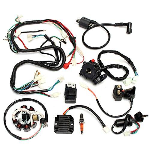 Raitron Complete elektrische bedrading harnas voor Chinese Dirt Bike ATV QUAD 150-250 300CC