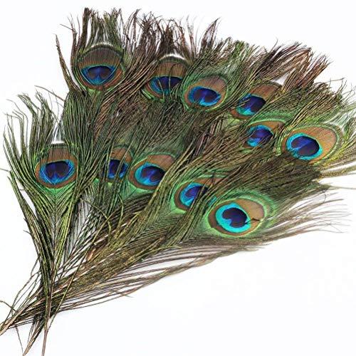 WINOMO 100 unids Hermosas Plumas de Cola de Pavo Real Natural Ojos Plumas Decoraciones para Arte Vestido Sombreros