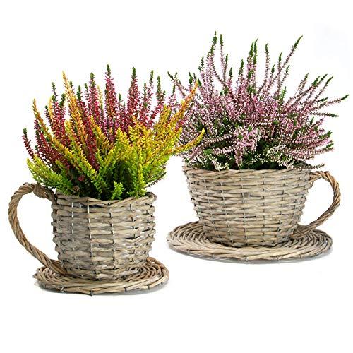 Maison & White Lot de 2 jardinières à thé Willow | Pots à plantes pour tasses et soucoupes | Corbeilles de fleurs étanches | Cadeau parfait