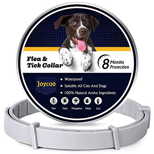 Joycoo Flea and Tick collar for dogs 8-Month Protection Flea and Tick...