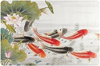 InterestPrint Oriental Asian Ink Koi Goldfish Painting Doormat Non Slip Indoor/Outdoor Floor Mat Home Decor, Entrance Rug ...