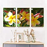 bajbajbaj1 Decoración de orquídeas, Impresiones artísticas, póster de Flores, Pintura artística para Pared, Lienzo Impreso, imágenes para la decoración del hogar de la Sala de Estar