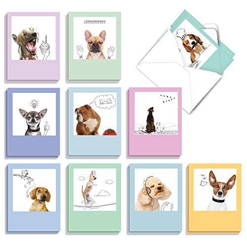 The Best Card Company - 20 Boxed Dog Cards with Envelopes (4 x 5.12 Inch) - Blank Assortment (10 Designs, 2 Each) - Dogs & Doodles AM6582OCB-B2x10