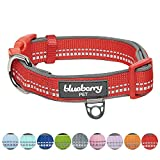 Collars For Large Dogs Review and Comparison
