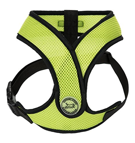 EXPAWLORER Choke Free Small Dog Harness, X Design Adjustable Soft Mesh Summer Vest, Fit Chest Girth 16'-20', Green