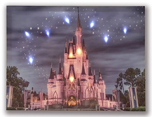 Hong Art- Lighted Canvas Prints with 9 LED Lights - Disney Resort Photo Castle Picture- Wall Art for Home Decor-12x16 Inch HA-17-CP-052