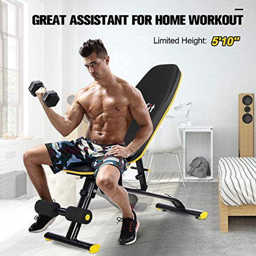 Weight Bench Adjustable Foldable, Doufit Heavy Duty Workout Bench Press for Home Gym, Indoor Multi-Purpose Exercise Incline Decline Assembled Bench for Weight Lifting Training (M)