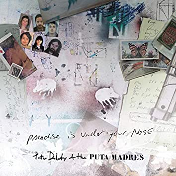 Paradise Is Under Your Nose (Radio Edit)
