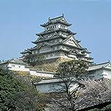 Himeji Castle (Volume 26) (Opus, 26)