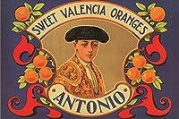 Eurographics 1751-62735アントニオスウィートバレンシアオレンジキャンバス24x36