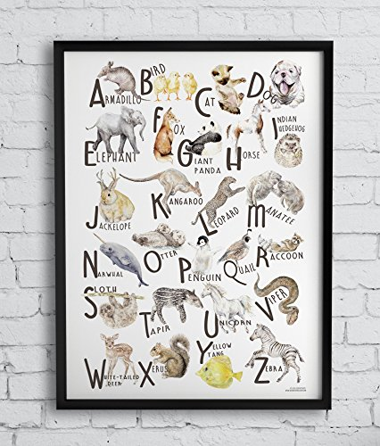 Animals ABC Alphabet Poster Watercolor