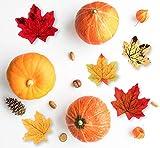 Sweelov 250 Stück künstliche Ahornblatt Herbstlaub Blätter Ahorn Laub Simulation Ahornblatt Für Halloween Erntedankfest Weihnachten Unterlage Wandbild, 5 Farben - 5