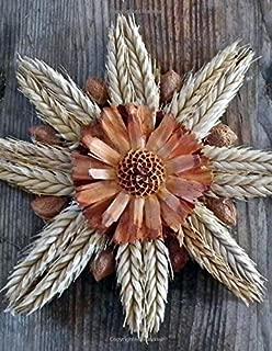 natures harvest logo