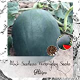 Watermelon Seeds - Black Seedness Watermelon Seeds for Planting Outdoors Home Garden - Seedless Watermelon Seeds - HIGH Yield - Sweet - Crisp - Non GMO - by HAVIPRO (30)