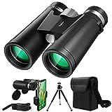 10 Best Binoculars