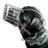Dingo Gear Dog Training Muzzle, Military K9 Agitation Metal Muzzle for Female Rottweiler S03000