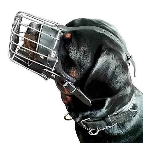 Dingo Gear Metall Maulkorbe verstärkte für Rottweiler Hund K9 um Komfort und Sicherheit für Hund Stärke und Einfache Sauberkeit Handgefertigt S02999