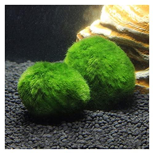 JIAN Künstliche grüne Algen Ball Simulation Wasser Grasanlage Gefälschte Pflanze Aquarium Landschaft Dekoration Kleine Algen Ballanlage Exquisite (Color : Green)