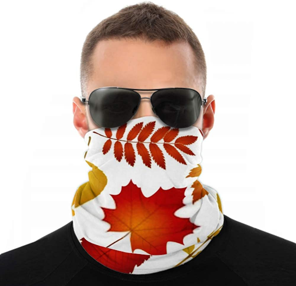 Headbands For Men Women Neck Gaiter, Face Mask, Headband, Scarf Collection Beautiful Colourful Autumn Leaves Isolated Turban Multi Scarf Double Sided Print Hair Bandanas For Women For Sport Outdoor