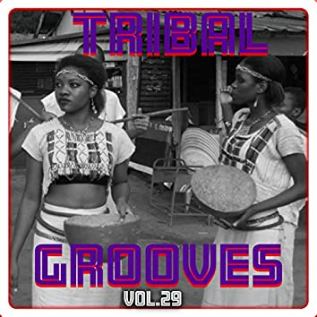 Tribal Grooves, Vol. 29