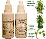 GreenLoop - Bamboo Plant Food (& for Money Plants)