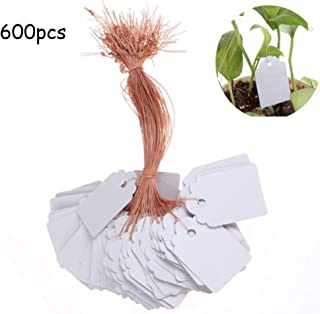 600 Pcs 4 x 6 cm Plastic Waterproof Plant Labels Tree Hanging Tags with String Line for Pot,Garden,Vegetable,Herbs,Flower,Planting Tray, White (6, 4)