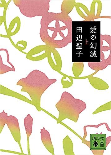 愛の幻滅(上) (講談社文庫)