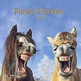 Funny Horses 2020 A&I - Broschürenkalender - 30x30cm - Wandkalender