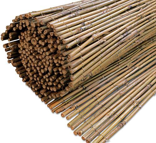 Windhager Sichtschutzmatte TAIPEI Naturprodukt aus unbehandeltem Bambusvollrohr, Beige, 3 x 1,8 m, 06419