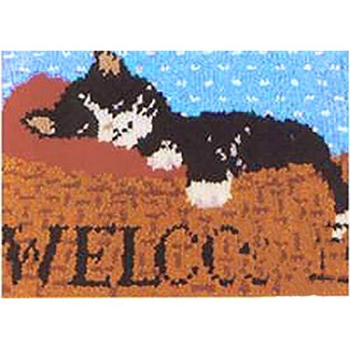 Kits De Crochet pour Adultes pour Adultes, Taie d'oreiller Fabrication De Kit Crochet De Verrou avec Toile Imprimée Décoration De Broderie en Laine Tricotée, 20\